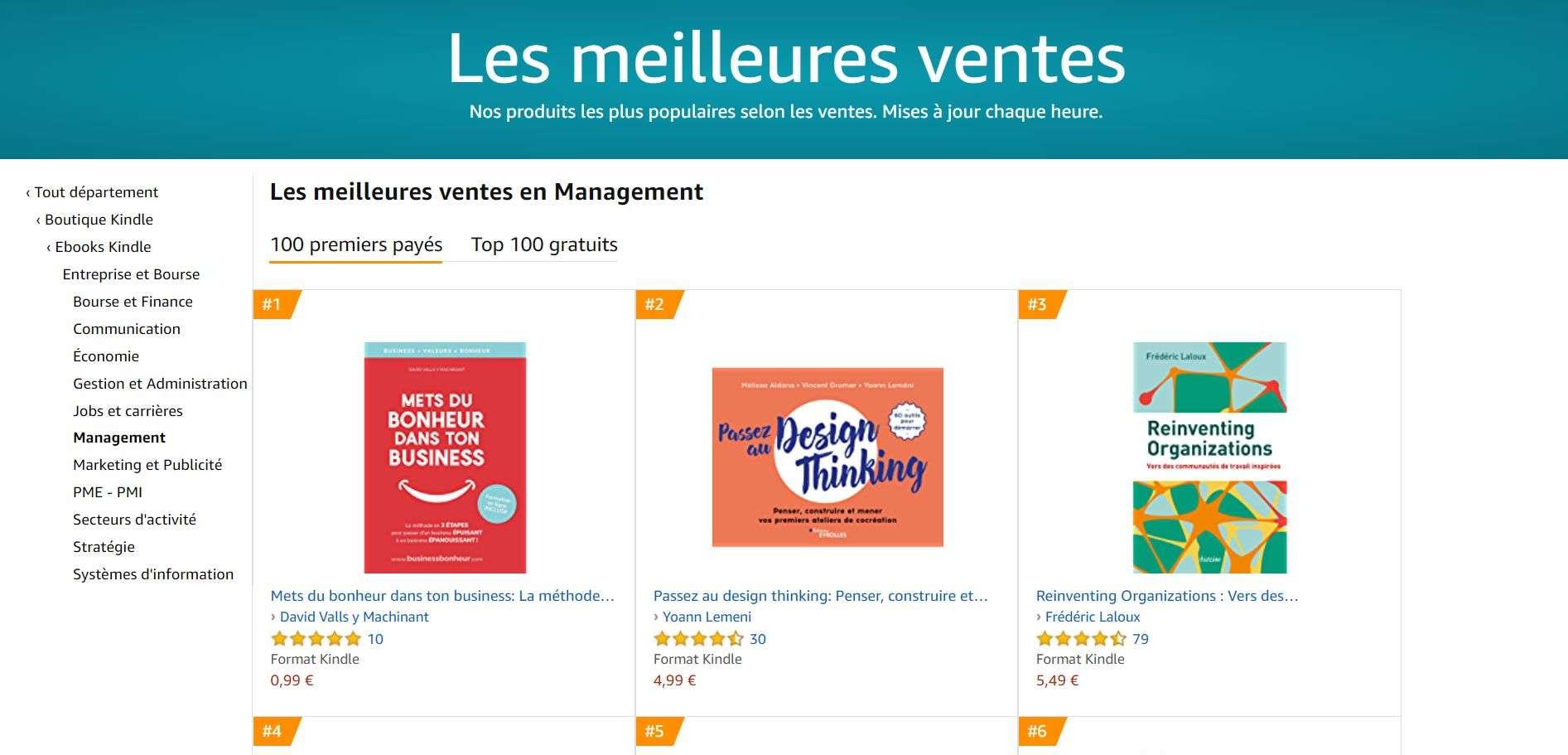 Exemple de couverture de livre sur la plateforme de vente en ligne
